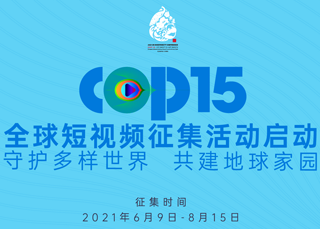 cop15全球短視頻徵集活動啟動