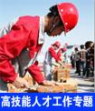 內蒙古自治區高技能人才工作專題