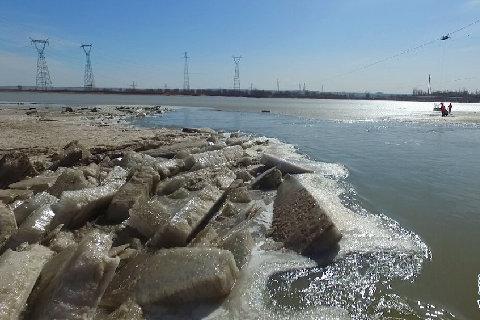 直擊千裏冰融黃河開