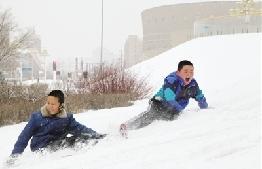 2月6日到7日鄂爾多斯市普降大雪