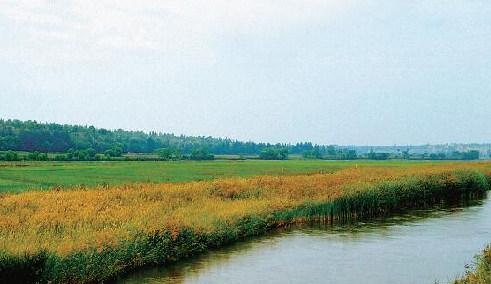 烏審旗被確定為國家農産品質量安全縣創建試點
