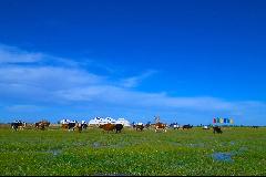 察罕蘇力德生態遊牧旅遊景區