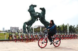 首批1000輛摩拜單車運抵康巴什區