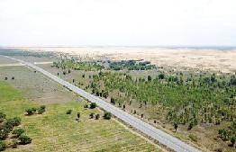 一條高速公路從內蒙古鄂爾多斯境內庫布其沙漠邊緣的生態防護林帶穿過