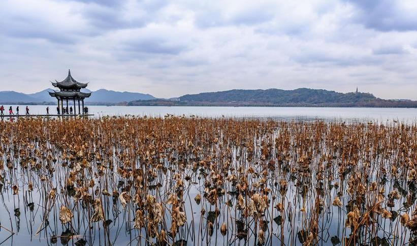 """冬日西湖呈現""""多彩畫卷"""""""