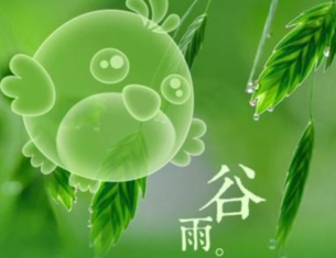 谷雨丨紅紫粧林綠滿池 布谷聲中雨滿犁