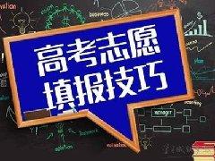 内蒙古:高考网上填报志愿类咨询培训实行审批备案制