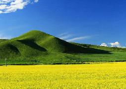 内蒙古大部分地区干旱缓解