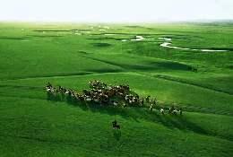 锡林郭勒盟将改良退化草场30万亩