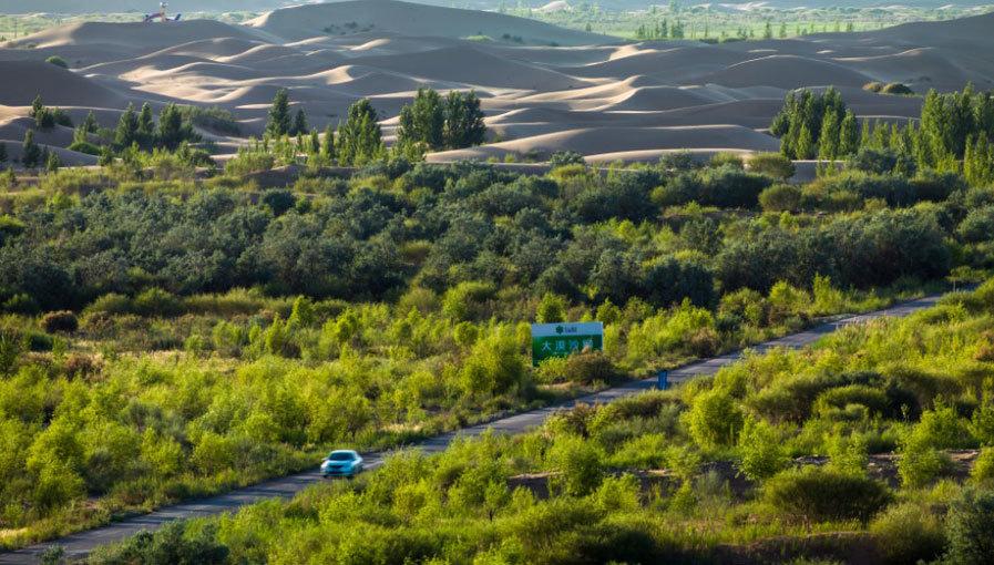 庫布其治沙之路——我國第七大沙漠庫布其大逆轉調查(上)