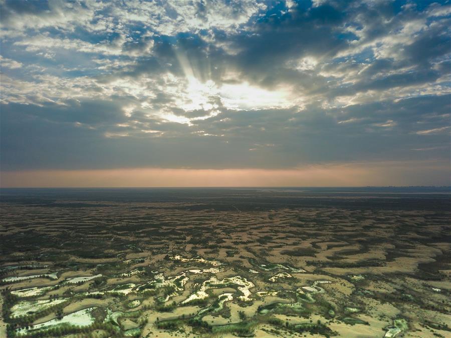 庫布其沙漠生態治理紀實
