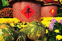 """迎中秋 庆丰收""""内蒙古自治区首届中国农民丰收节""""准备就绪"""