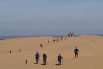 沙上运动风靡内蒙古