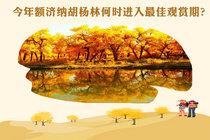 给你一张2018年额济纳胡杨林变色时间表 请收好!