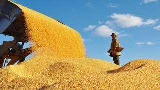 內蒙古首批優質糧食工程産後服務中心在巴彥淖爾揭牌