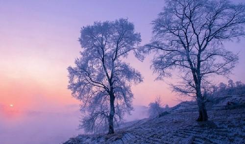 這裏,滿足你對冬季的唯美想象