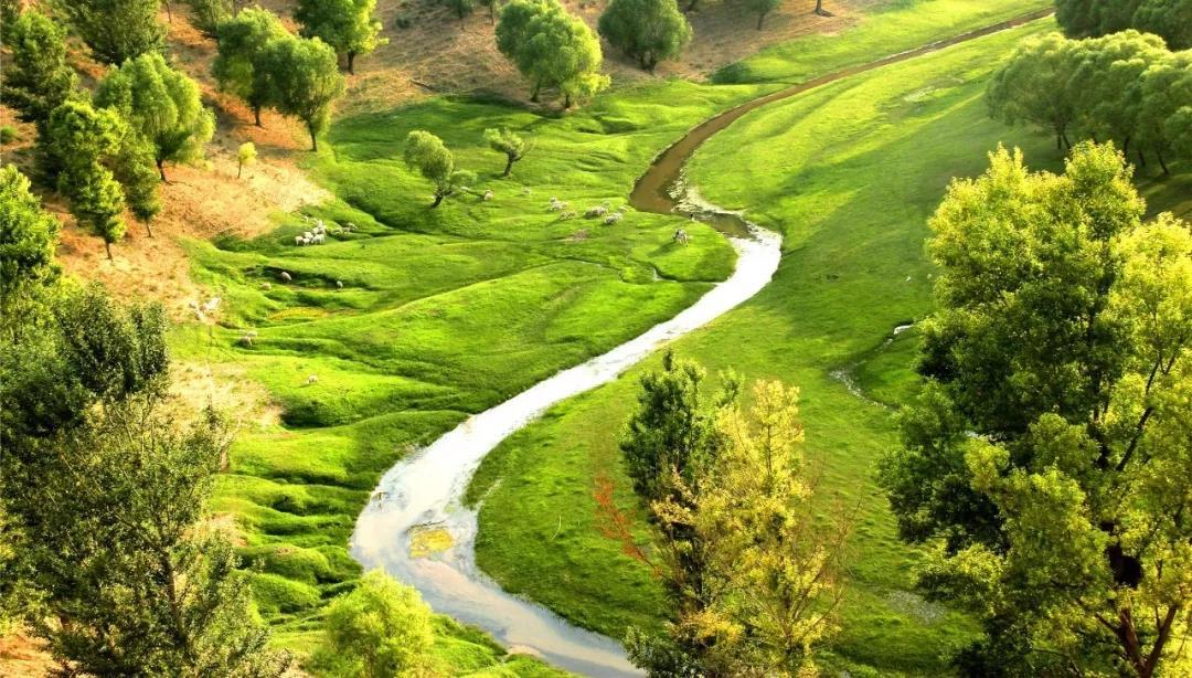 【綠色崛起正當時】 13萬烏審兒女,70年綠色接力不變的夢!