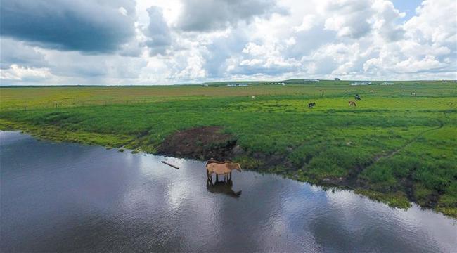 雲卷雲舒瞰草原