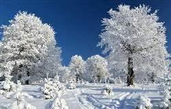 內蒙古冬季冰雪文化旅遊産品在京發布