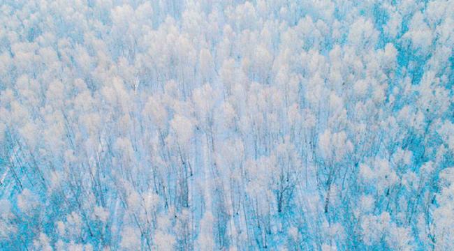 林海雪原美如畫