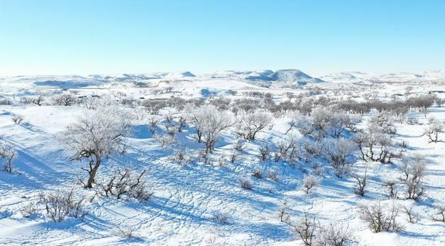 錫林郭勒草原冬日美景