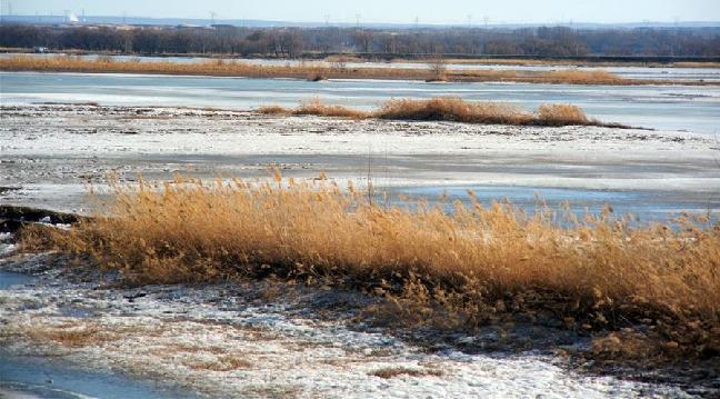 黃河內蒙古段開河形勢平穩