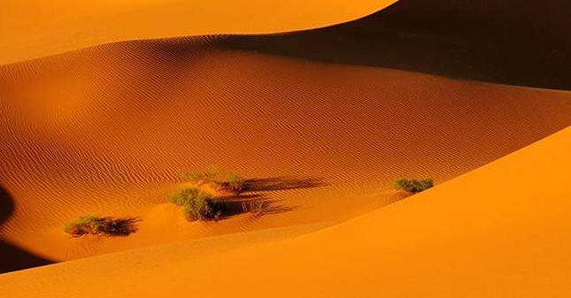 【聽説內蒙古③】大漠沙如雪