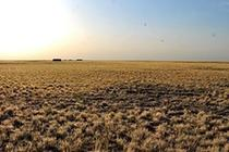 內蒙古幹旱面積超六成並將繼續擴大