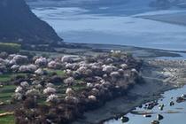 春到雅魯藏布江大峽谷