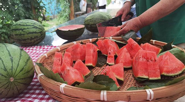 盛夏的果實