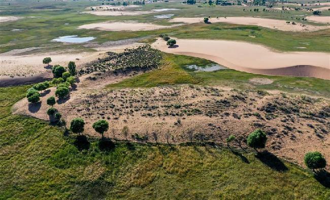 飛閱毛烏素 沙地變綠洲