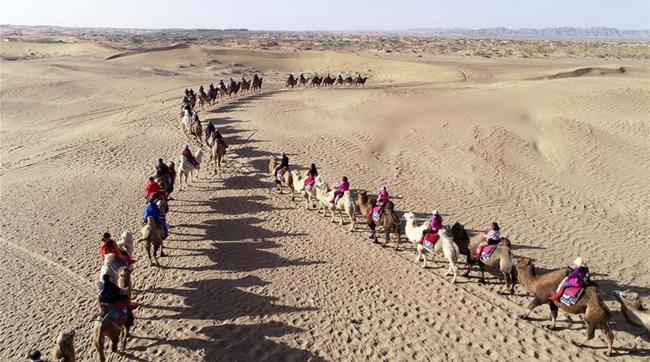 內蒙古阿拉善:金秋大漠旅遊旺