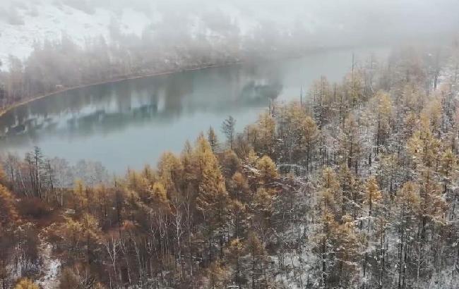 """內蒙古阿爾山:從""""砍樹到看樹"""""""