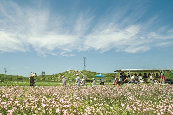 為興安百姓打造天藍水清地綠的寧靜家園——內蒙古興安盟生態環境保護工作紀實