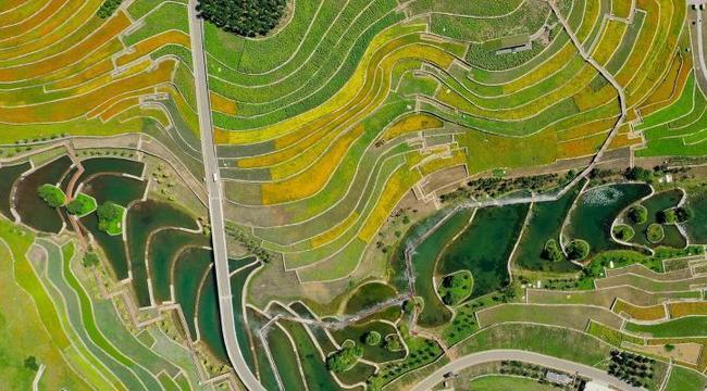 美麗生態激活美麗經濟——內蒙古興安盟走上綠富同興的發展新路