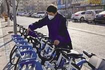 """共享單車少了?原來是要""""貓冬"""""""