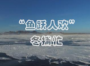"""""""魚躍人歡""""冬捕忙"""