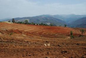 內蒙古耕地土壤環境質量類別劃分省級成果通過評審