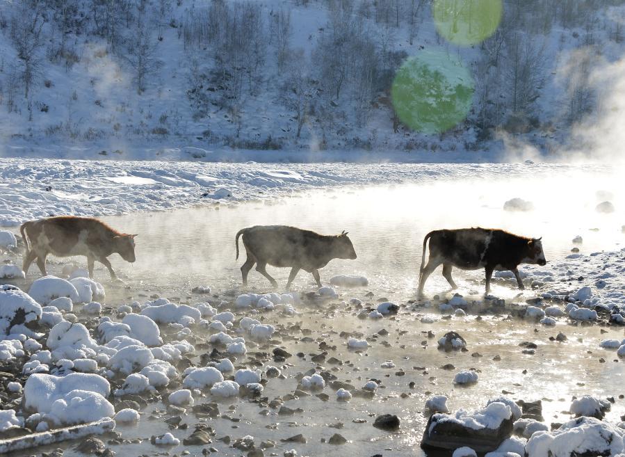 """內蒙古阿爾山市新春旅遊迎來""""開門紅"""""""