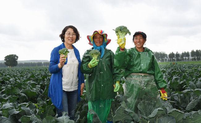 全國人大代表郭艷玲:推廣新技術 促進農牧業綠色發展