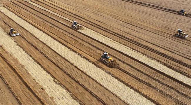 內蒙古達拉特旗:黃河岸邊備耕忙 鹽鹼地裏變了樣