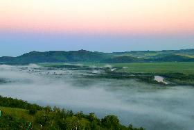 濕地晨霧 如夢似幻