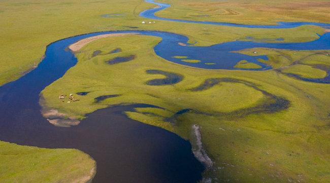 北疆草原秋日即景