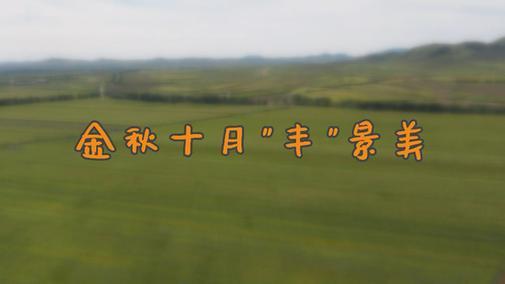 """金秋十月""""豐""""景美"""